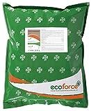 CULTIVERS Harina de sangre de 5 Kg. Abono Ecológico con alto contenido en Nitrógeno, Hierro Hémico y Materia...