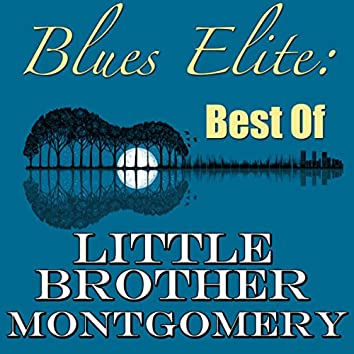 Blues Elite: Best Of Little Brother Montgomery