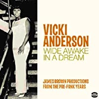 Wide Awake in a Dream by Vicki Anderson (2011-03-11)