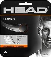 ヘッド(HEAD) 硬式テニス ガット ホーク セット 12m 281103 グレー