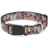 Buckle-Down Plastic Clip Collar - Tasmanian Devil Expressions Gray Swirl - 1' Wide - Fits 9-15' Neck - Small