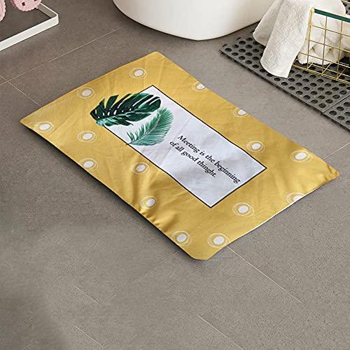 SUNONE Almohadilla de Barro de diatomeas Suave, Almohadilla de baño Lavable de Secado rápido y Suave con Funda Lavable Almohadilla Antideslizante Segura para niños y Ancianos,D