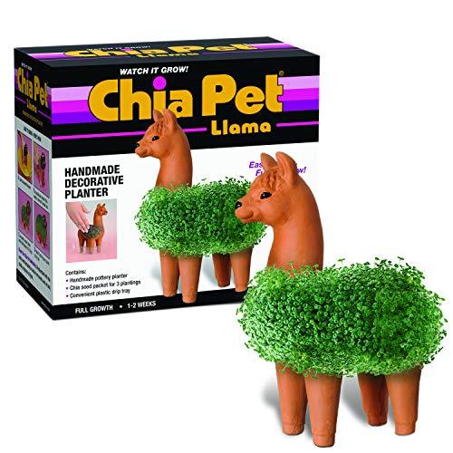 Joseph Enterprises, Inc Llama Chia Pet Decorative Planter