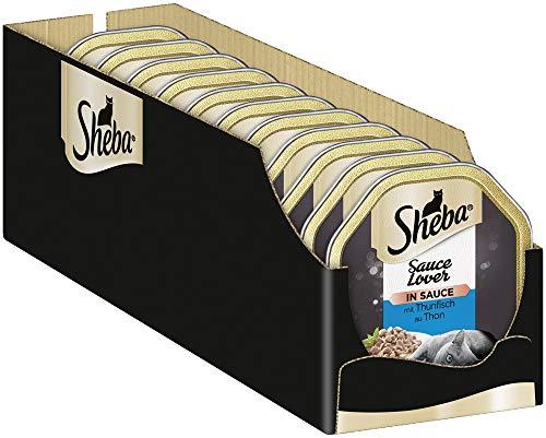 Sheba Sauce Lover – Feine Thunfischhäppchen mit Sauce für ausgewachsene Katzen – 22 x 85g Katzennahrung in der Schale