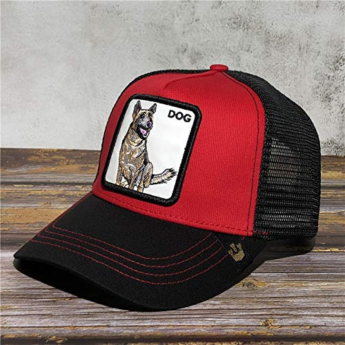 Animal Hat Spaanse Baseballcap