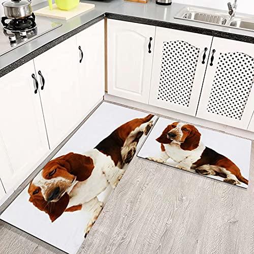 Alfombras Cocina Lavable Antideslizante Basset Pura Raza Cachorro Hound Mamífero Sentado Tiro Animales Mascota Fauna Canina Alfombrilla de Goma Alfombra de Baño