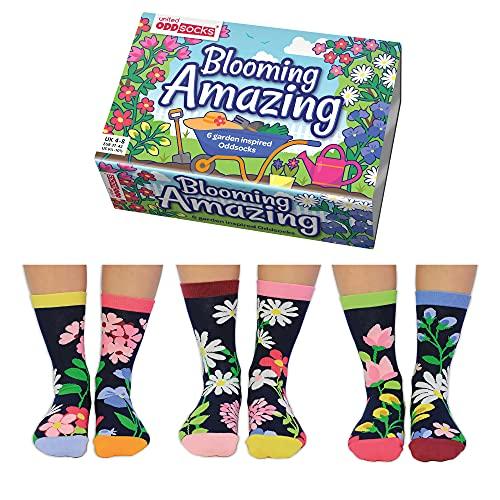 United Oddsocks Blooming Amazing Socken mit Blumenmuster