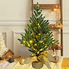 Mini Christmas Pine Tree: Increase the beauty and light up your home with this 2FT/24 inch tall mini table top Christmas tree. With individually crafted branch tips, this full bodied Xmas tree is as charming as the real. Easy To Use & Storage: The Sm...