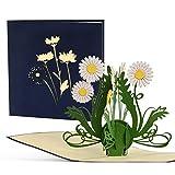 Tarjetas felicitacion, tarjetas dia de la madre. Tarjeta cumpleaños mama y tarjetas regalo desplegable para felicitar a madres, abuelas, familiares y amigos, F19