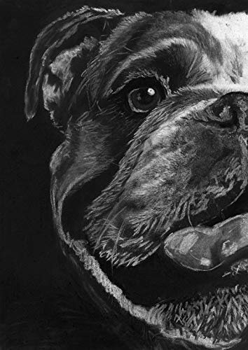 English Bulldog Wall Art Print, Dog Nursery Decor, Bulldog Owner Gift, English Bulldog Memorial, Black and White Drawing Hand Signed By Pet portrait Artist Oscar Jetson Choice Of Sizes