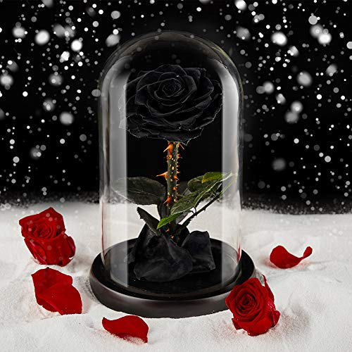 Preserved Flower Rose Eternal Rose Real Rose in Glass Dome Gift for Her Valentine's Day Christmas Mother's Day Thanksgiving Anniversary Birthday (Black, Large)