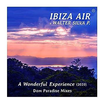 A Wonderful Experience (Dom Paradise Remix 2020)
