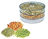 JD Plastic Organic Hygienic Fresh Sprout Maker Box Sprouted Grains Seeds Dal Channa
