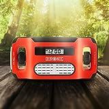 Duronic Apex Radio AM/FM, wiederaufladbar – Solarradio – Kurbelradio – Solarenergie, Handkurbel und USB-Ladegerät – mit Radiowecker und Taschenlampe - 2
