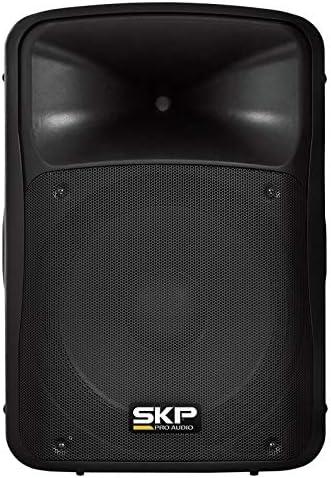 Top 10 Best skp pro audio amplifier