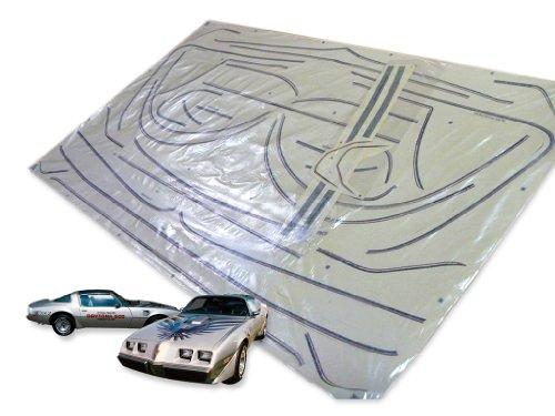 1979 Pontiac Firebird Trans Am 10th Anniversary Edition Ultimate Decals Stripes Kit - Silver
