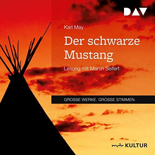 Der schwarze Mustang audiobook cover art