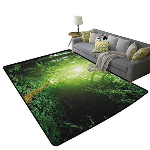 Landscape Kids Room Home Decor Carpet A Way in The Jungle of Malaysia Rainforest Fresh Grass Trees Rural Morning SceneryCute Soft Children's Bedroom Rug Green 59 x 71 Inch