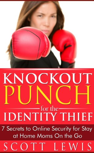 Knockout Punch for the Identity Thief: 7 Secrets to Online Security for Stay at Home Moms On the Go (English Edition)