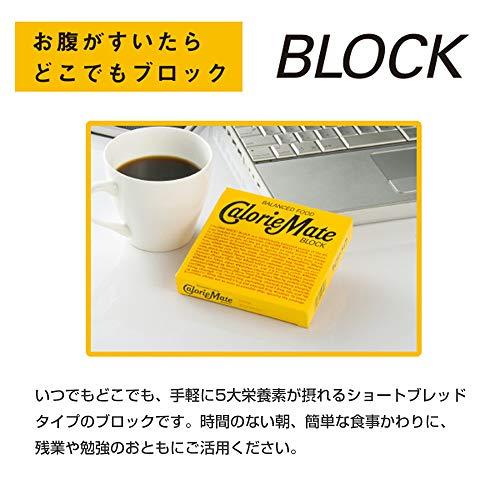 大塚製薬『カロリーメイトブロックチョコレート(09220)』