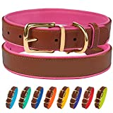 CollarDirect Leather Dog Collar Brass Buckle Soft Padded Puppy Small Medium Large Red Pink Blue Green Purple Yellow (Neck Fit 15