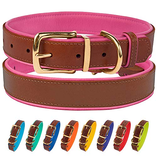 CollarDirect Leather Dog Collar Brass Buckle Soft Padded Puppy Small Medium Large Red Pink Blue Green Purple Yellow (Neck Fit 15'-17', Pink)