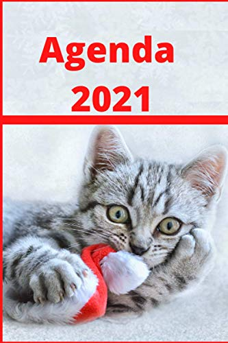 Agenda 2021: Organisateur, planificateur, emploi du temps, calendrier . Amoureux des chats, idée cadeau de noël