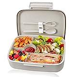 kupbox Brotdose Bento Box für Kinder, auslaufsichere Lunch Box mit fünf separat Fächer, BPA Frei, Geeignet für Mikrowellen und Spülmaschinen, kein Fremdgeruch-Grün.-Primärfarbe