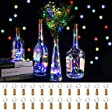 LEDIKON 24 Pack 20 Led Colored Wine Bottle Lights with Cork,3.3Ft Silver Wire Colorful...