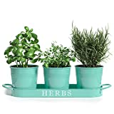 """Barnyard Designs Herb Pot Planter Set with Tray for Indoor Garden or Outdoor Use, Turquoise Metal Succulent Potted Planters for Kitchen Windowsill, (Set of 3, 4.25"""" x 4"""" Planters on 12.5"""" x 4' Tray)"""