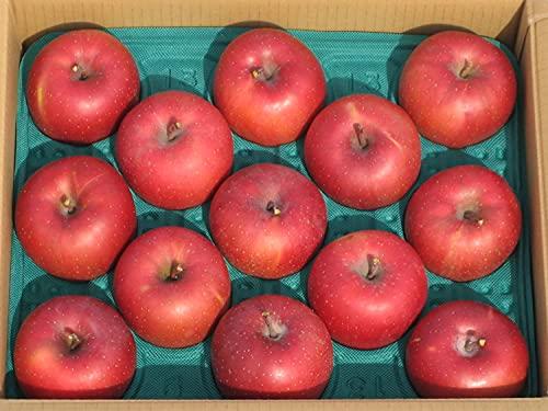 りんご 岩手県産 ご自宅用 (5kg)