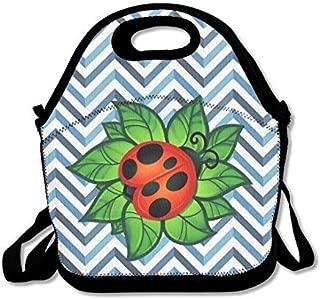 Fiambrera Miraculous Ladybug Marinette Lunch box ni/ños comida pl/ástico