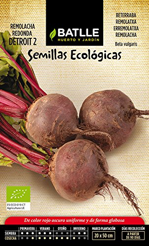 Semillas Ecológicas Hortícolas - Remolacha Mesa Detroit 2 - ECO - Batlle
