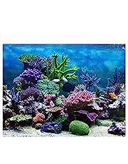 ViaGasaFamido Cartel de pecera, Adhesivo de PVC Acuario de Coral subacuático Fondo de pecera Fondo de Papel de decoración (61 * 30 cm)(61 * 41cm)