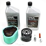 Kohler 12-789-01-S Lawn & Garden Equipment Engine Maintenance Kit Genuine Original Equipment Manufacturer (OEM) Part