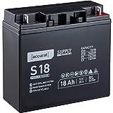 Accurat 12V 18Ah Blei-Akku AGM Blei-Batterie Zyklenfest Supply-Serie VRLA Versorgungsbatterie (wartungsfrei)