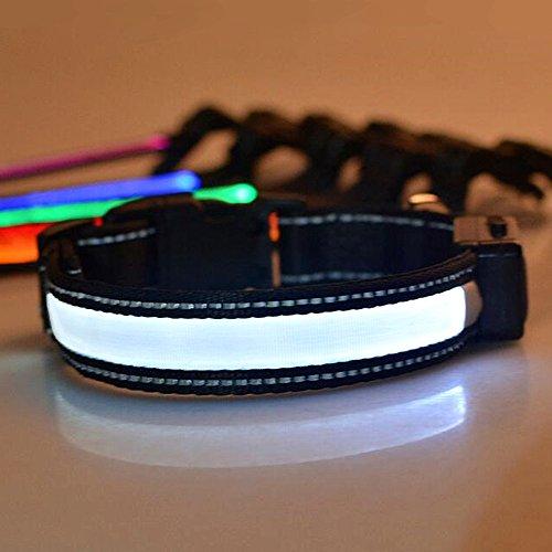 LED halsband Laixin LED halsband voor honden met USB en zonne-energie oplaadbaar Waterdicht veiligheidsinstructies Halswarmer gemaakt van nylon halsband voor honden Verstelbare halsband voor honden - Wit (S, 30 cm ~ 40 cm, 7,5 kg ~ 15 kg), L:50cm~60cm(25kg~40kg), Bianco(Reflective)