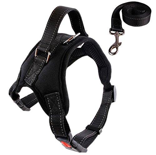 Ylen, imbracatura per cani di taglia media e grande, regolabile, con morbida imbottitura e guinzaglio