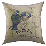 Mugod Pillow Cases Floral Bluebird Vintage Blue Bird Birdcage Flowers Throw Pillow Cover for Men Women Boys Cushion Cover 20x20 Inch