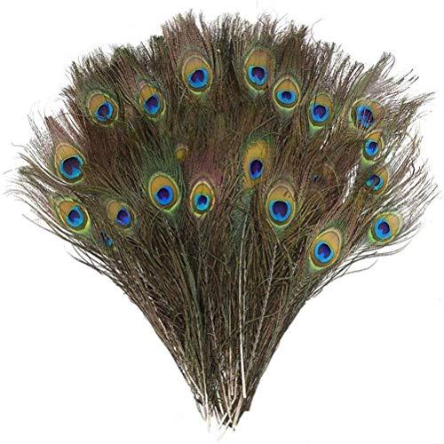 Atrumly 10 plumas naturales de ojo de pavo real, plumas de ojo de cola verde para manualidades, disfraces, decoracin de bodas y fiestas