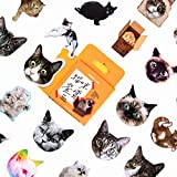 WIKI FIESTA - Mini pegatinas de gato con diseño de gatos, pegatinas de gatito, pegatinas de gatito, pegatinas de gato infantil, pegatinas para scrapbooking, pegatinas de niña (lote de 46)
