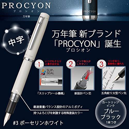 プラチナ万年筆『プロシオン(PNS-5000)』