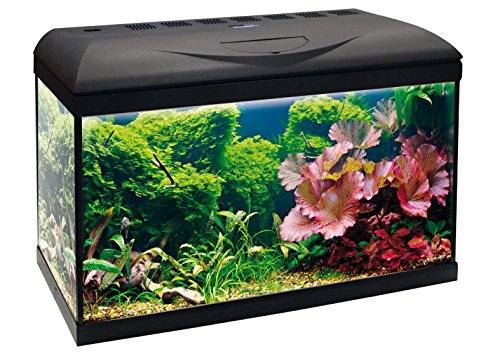 Wave Acquario Basic 60 LED