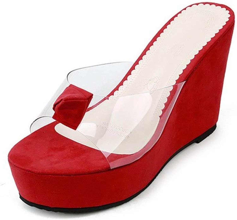 MEIZOKEN Womens Transparent Wedges Sandal Open Toe Non-Slip Mule shoes High Heel Platform Slippers