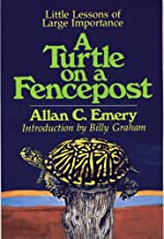 A Turtle on a Fencepost: Little Lessons of Large Importance
