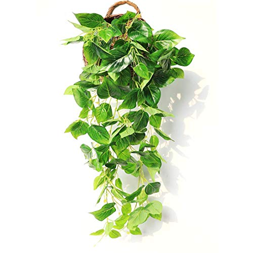 JUSTOYOU 3FT Artificial Hanging Plants Ivy Vine Fake Leaves Greeny Chain Wall Home Room Garden Wedding Garland Outside Decoration Pack of 1(Scindapsus Vine)