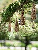 Gardenders Supply Company Backyard Bird Brew Birdseed Ornaments