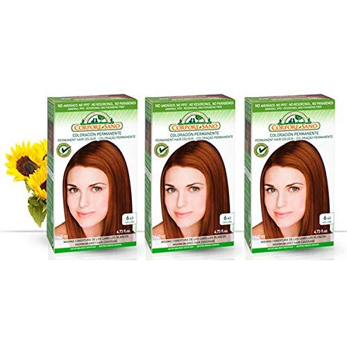 Corpore Sano Pack x3 Unidades Tinte Avellana 6.43 Permanente 140ml - Tinte de coloración sin amoníaco, resorcinol ni parabenos. Los champús naturales de Henna poténcia la durabilidad del color