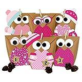Papierdrachen Eulen Adventskalender zum Befüllen - 24 Weihnachtseulen - Weihnachten 2020 - Set Rosa mit zusätzlicher Dekoration - zum selbst basteln - für Kinder