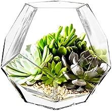 CYS EXCEL GGV101/06-1P Glass Geometric, Prism, Honeycomb Vase (H-6